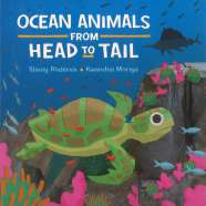 Book cover for Ocean Animals from Head to Tail