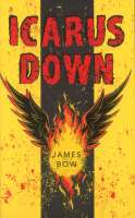 Book cover for Icarus Down