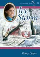 Book cover for The Ice Storm