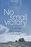 Book cover for No Small Victory