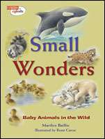 Book cover for Small Wonders
